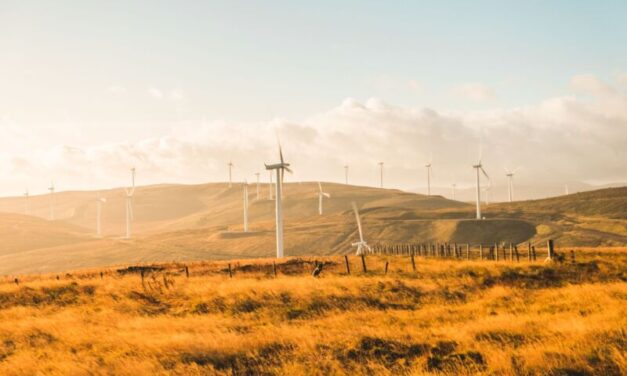 SSE unveils 100% renewable electricity contract as standard for business customers as it launches 'SSE Energy Solutions' brand
